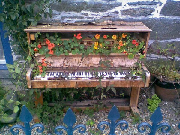 A beautiful photo of an abandoned piano overgrown with nasturshums. Image: Jacob Whittaker.