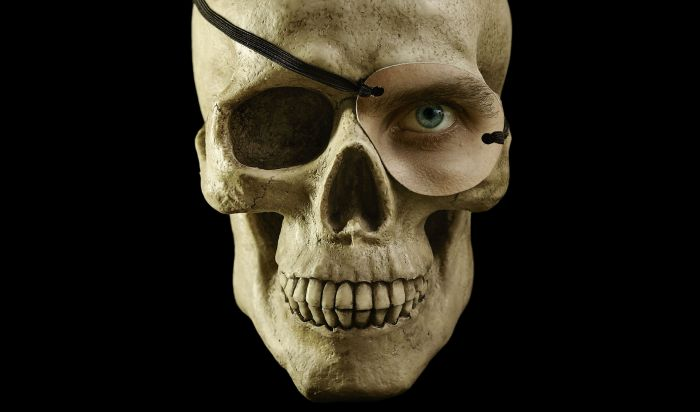 resized skull